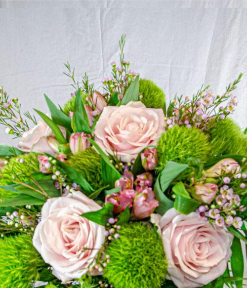 rosa e altroemeria 2